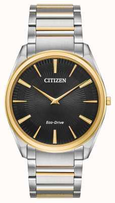 Citizen |メンズ|スティレットツートーンブレスレット| AR3074-54E