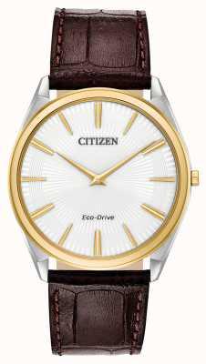 Citizen スティレット|メンズエコドライブ|ブラウンレザーストラップ|白い文字盤 AR3074-03A